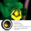 Nikon makro közgyűrűsor