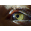 Kép 3/13 - Nikon makro objektív