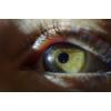 Kép 3/16 - Nikon Z6 macro objektív